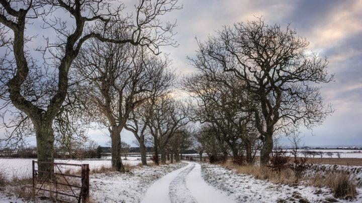 Gdzie są prawdziwe zimy i piękna, dzika pryroda?